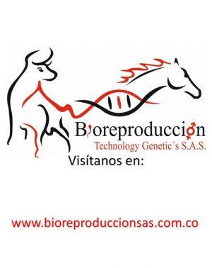 Bioreproduccion-local-4